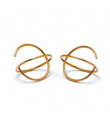 Earrings Carl Dau